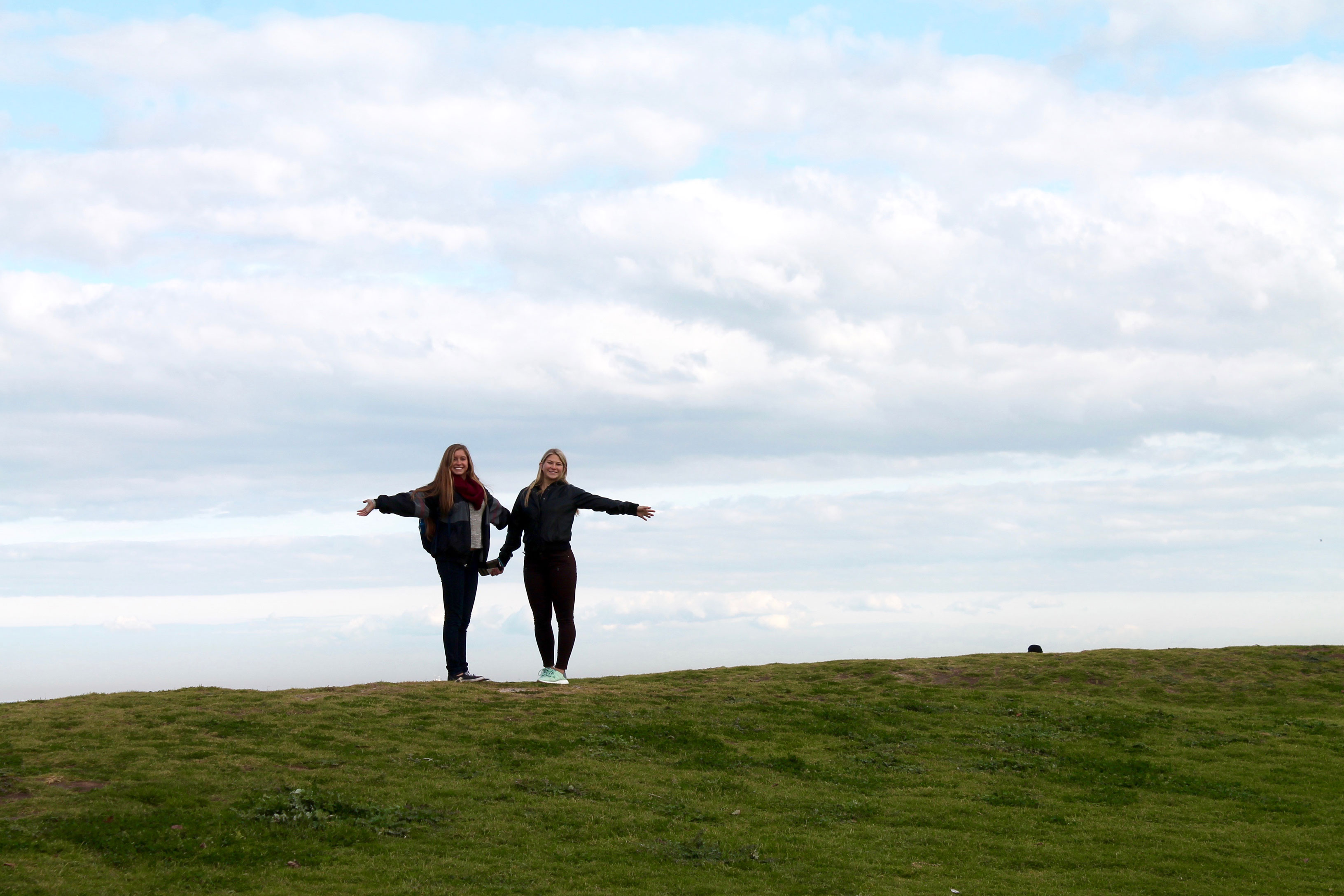 Two friends holding hands in a green pasture