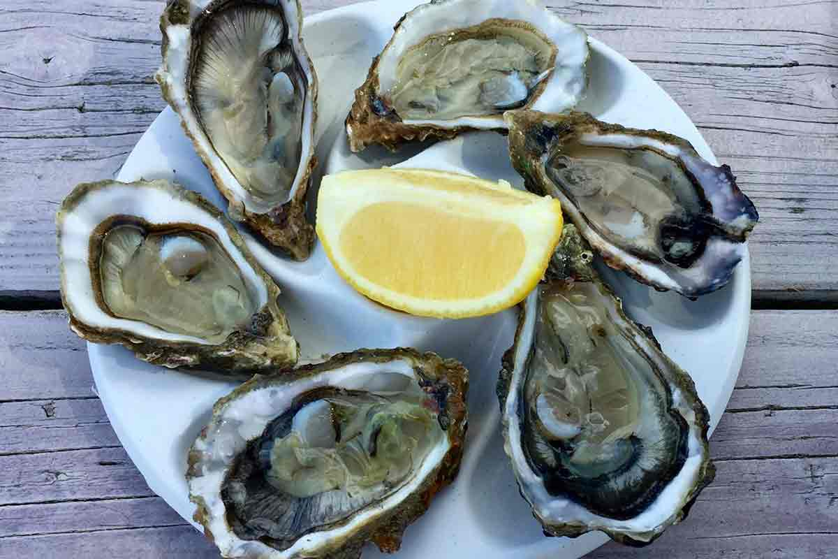 Authentic bordelaise oysters on a plate with lemon