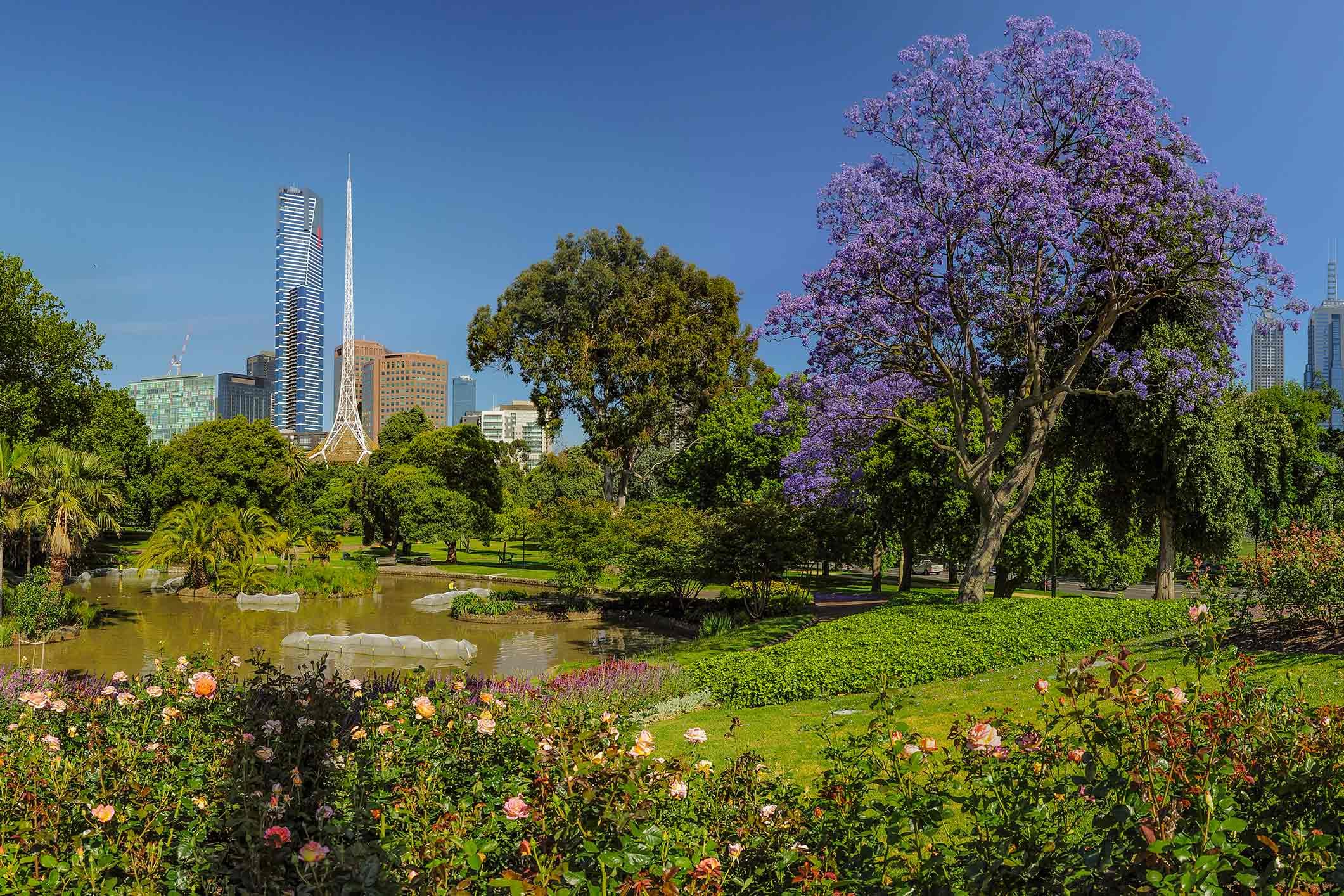 Royal Botanical Garden in Melbourne. Australia