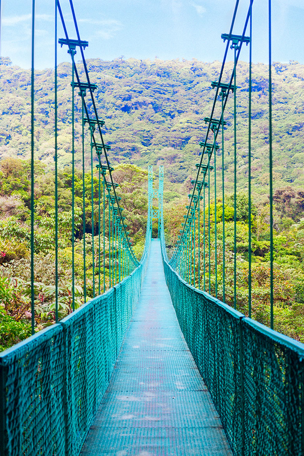 Suspension bridge in Costa Rica