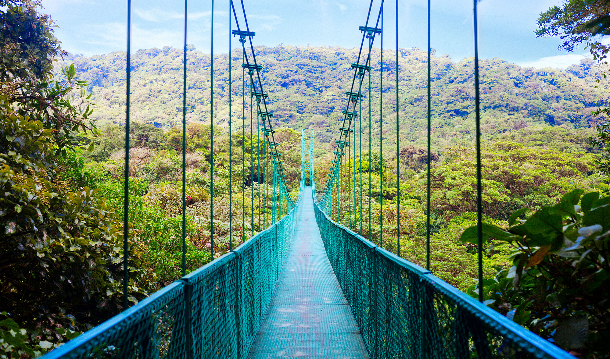 View of pedestrian suspension bridge in the jungle of Costa Rica.