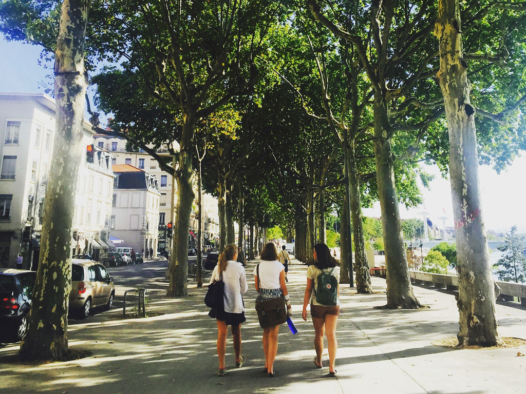 Three friends walking down the street surrounded by trees.